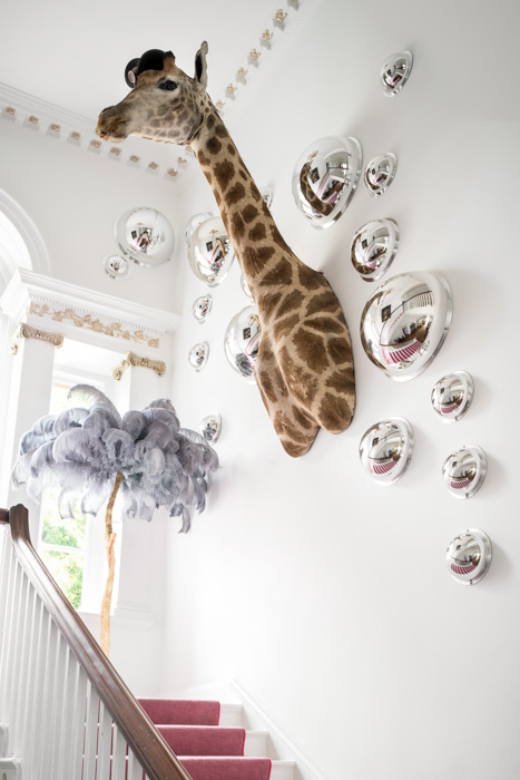 Edinburgh property with giraffe